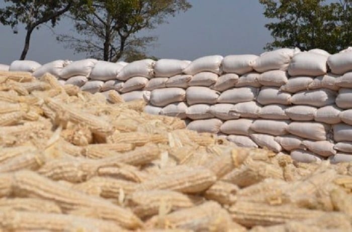 The NCPB maize scandal
